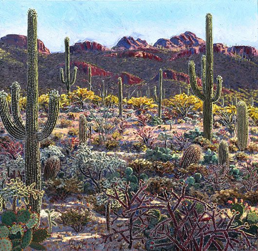 Lucy Culliton, Tucson Cactus, 2005, oil on canvas, 150 x 150 cm. Private collection - See more at: http://artguide.com.au/articles-page/show/lucy-culliton/#sthash.lJqqrQcu.dpuf