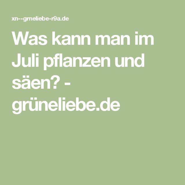 Was kann man im Juli pflanzen und säen? - grüneliebe.de