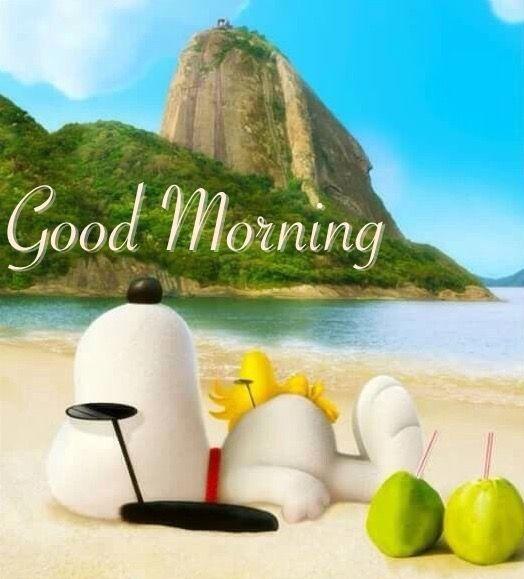 807dd89e323880f9878a8d275b3740f1--peanuts-movie-peanuts-characters.jpg