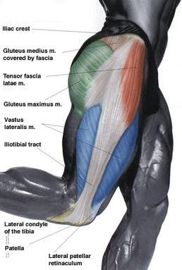 Tensor Fasciae Latae Muscle - I feel pain exactly like these people describe. It's nice to find a diagnosis and hopefully get some pain relief!