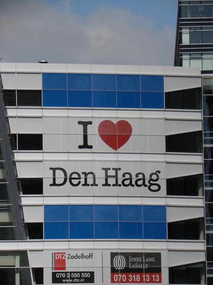 Dit zie als je Den Haag in rijdt en zo is het maar net.