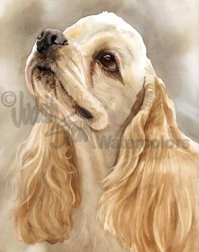 COCKER SPANIEL Dog Pet Portrait Watercolor Art Print by k9stein, $22.50