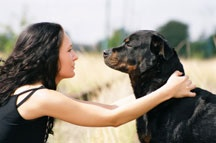 Rottweiler Rescue Group