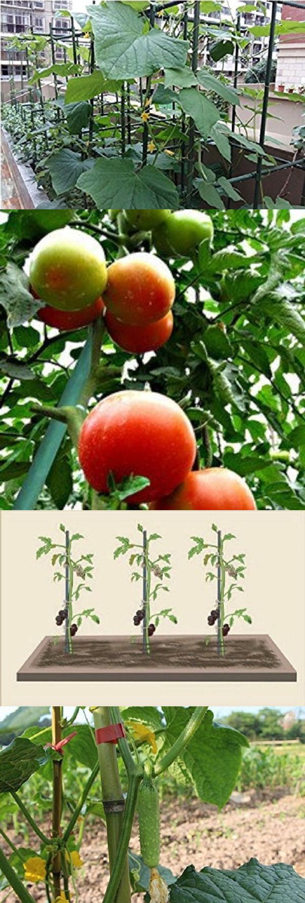 Plant Ties and Supports 181001: Ecostake Garden Plant Stakes Tomato Pepper Eggplant Stakes With Stretch Ties -> BUY IT NOW ONLY: $154.3 on eBay!