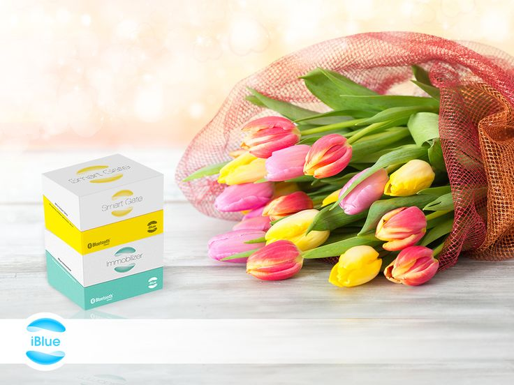 Today, beside the flower bouquet present safety as well with iBlue! Our Bluetooth based products do not just provide protection, but also conveniences for the ladies! Happy women's day to everyone! http://iblue.eu/ #iblue #womensday #smartgate #immobilizer #ios #apple #android #google #windosphone #microsoft #bluetooth #BLE #smarthome