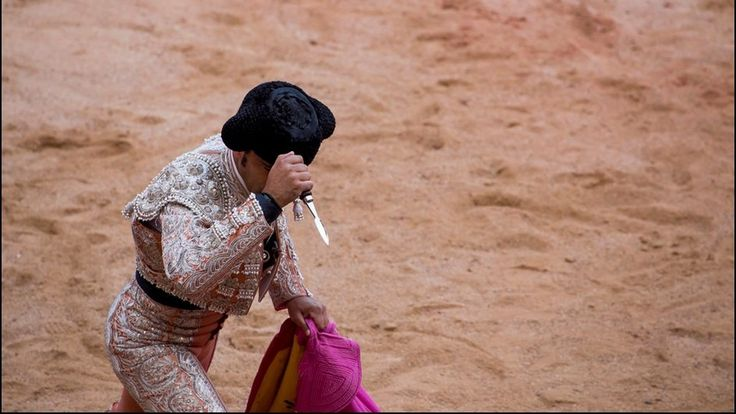 To the Prime Minister of Spain: Please Ban Bullfights and Bull Runs
