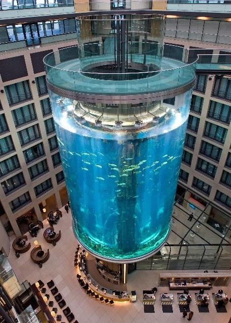 The AquaDom in the Sealife Center at the Radisson SAS Hotel, Berlin, Germany. It houses more than 1,500 fish and holds more than one million liters of water.
