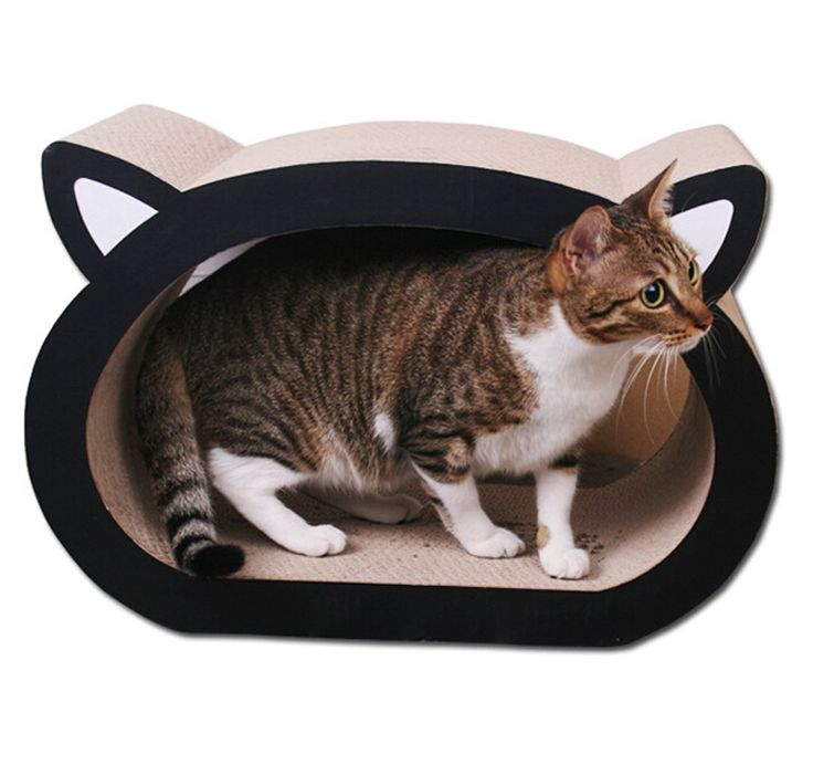 1000 ideas about cat scratcher on pinterest cat trees cat furniture and scratching post - Cat bed scratcher ...