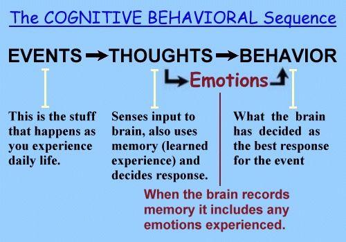 22 Fun Behavior Facts. - Random Facts