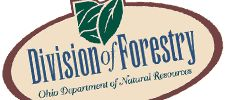 Pick One of Ohio's 21 State Forests|Ohio DNR Division of Forestry