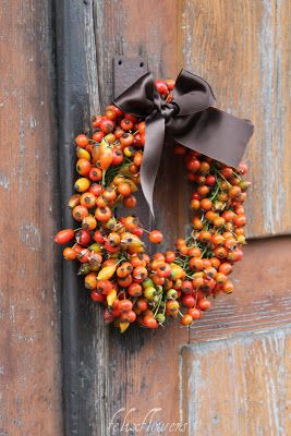 you can get these tiny pumpkin pods, online by the pound.They make wonderful wimsey to your decorations for fall.