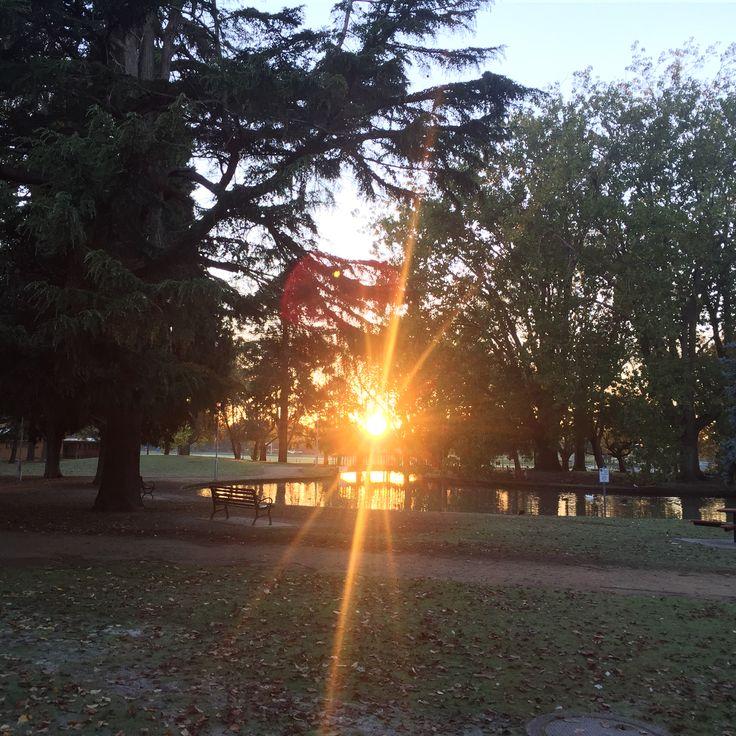 Sun rise in Caulfield Park, Melbourne, Australia