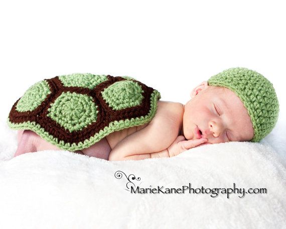 For Sarah: Pattern, Photo Props, Turtle Shells, Turtles, Baby Photo, Kid
