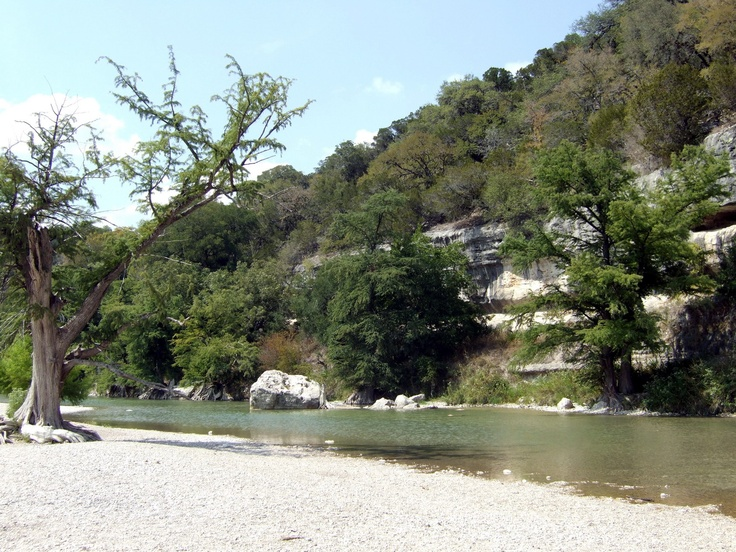 17 best images about my texas wildflowers on pinterest for Floating the guadalupe river cabins