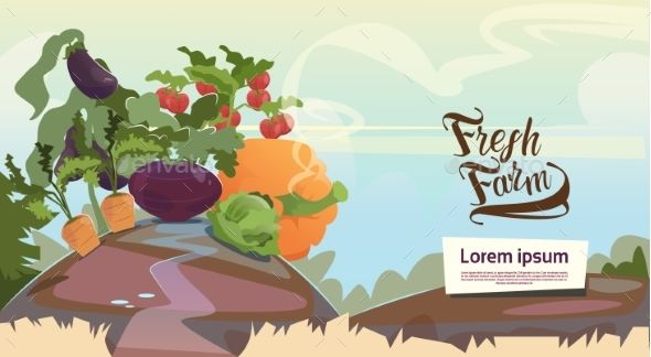 Vegetable Harvest Eco Fresh Farm Concept by prostockstudio Vegetable Harvest Eco Fresh Farm Concept Flat Vector Illustration