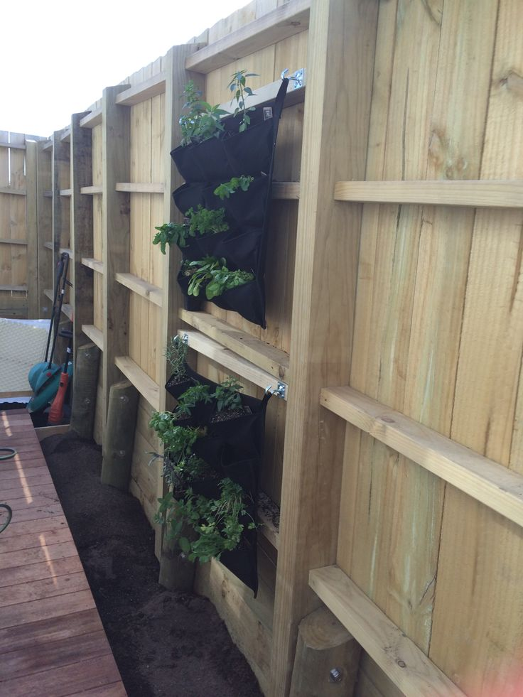 First vertical garden hung