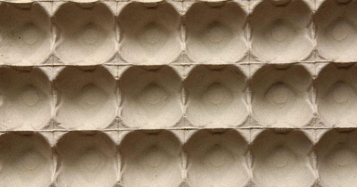 Formiga artesanal com caixa de ovos. Artesanato de formiga é uma maneira ideal para os jovens artesãos aprenderem sobre esses insetos. Três gomos de uma caixa de ovos posicionados juntos representam uma formiga anatomicamente perfeita, por isso dizemos aqui que esses recipientes são perfeitos para criar um artesanato de formigas. Com um pouco de imaginação, elaboração e paciência, ...
