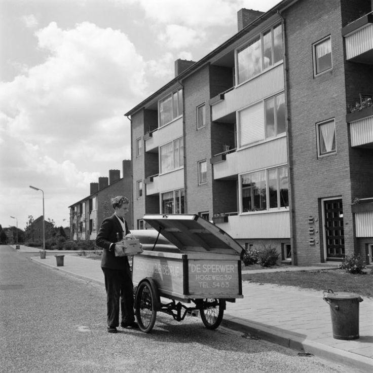 Bosweg 1956