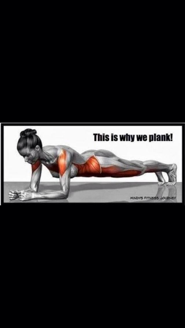 Easy Fitness: The Plank Challenge!!!