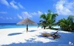 Love vacation