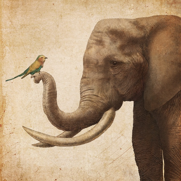 A New Friend - Art Print by Eric Fan/Society6