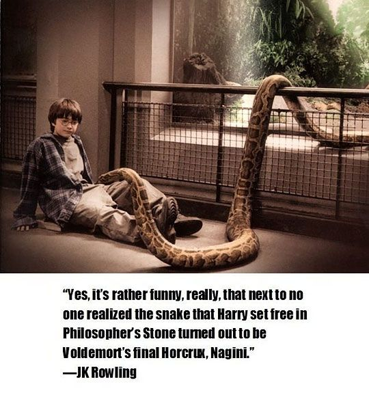 Harry Potter---before any more of you repin this, as much as this would be cool if it were true, I have been informed that nagini is NOT the same snake and JK has said that it isn't the same snake!! Repin to spread the word:)