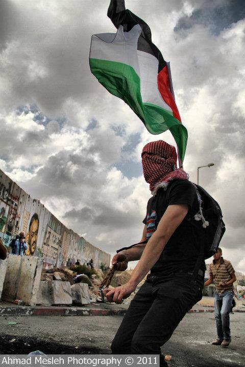 #PHOTO: Resisting #Israel's illegal Wall in occupied #Palestine. #EU #Europe #FreePalestine #World