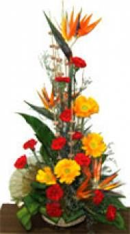 Shopping online mixed flower with orchid for Pune delivery. Fast and same day gifts delivery to Pune.  Visit our site : www.puneflowersdelivery.com/flowers/orchids-delivery.html