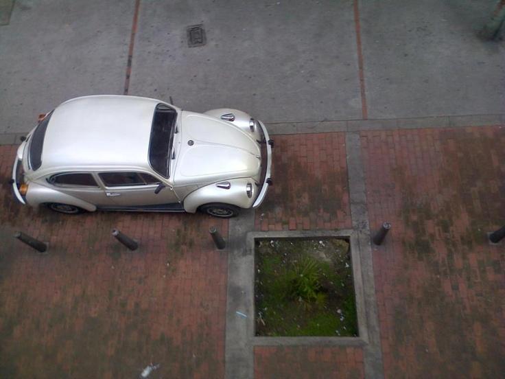 Little Car! Calle 53