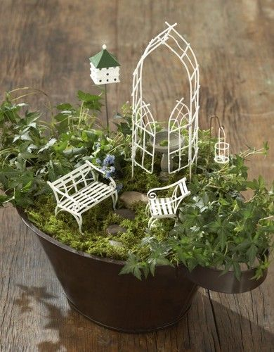 Fairy Mini Gardening Kit