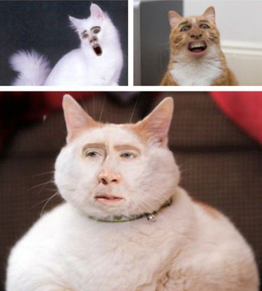 Cat In The Hat Nicholas Cage
