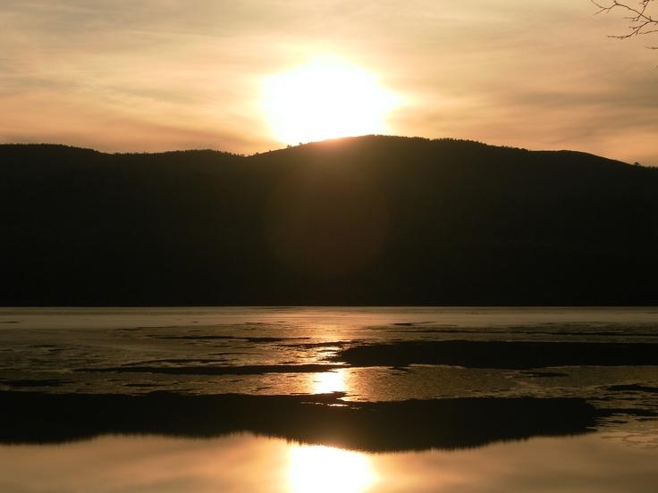 Glen Affric, little wonderland