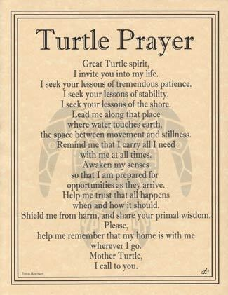 Spirit Totem Animals: Turtle Prayer.
