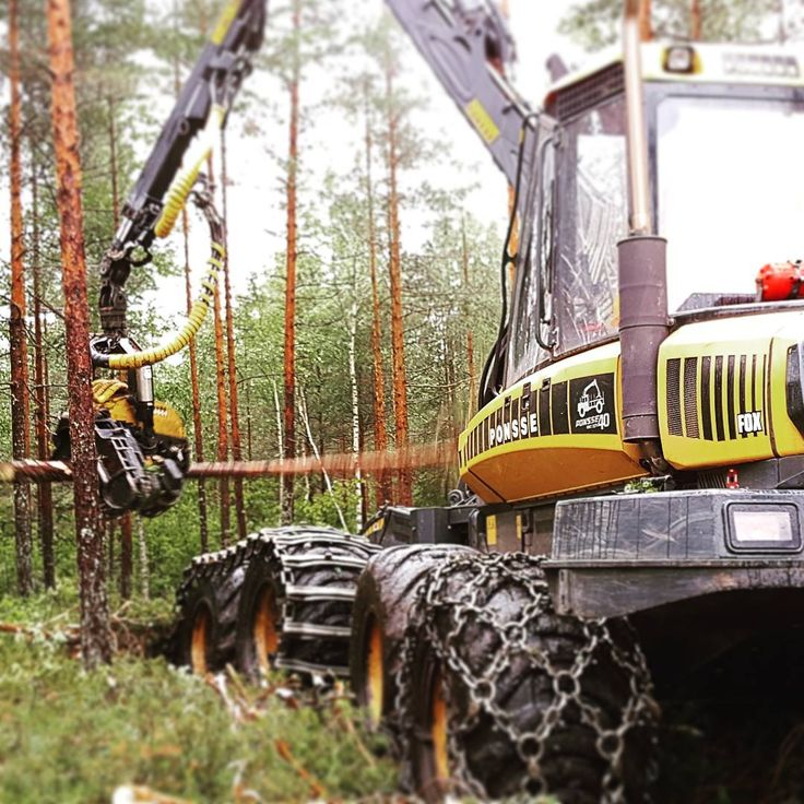 From the daily life of one of our employees.Thinning a young pine stand in the deep forest. Big machinery (Ponsse Fox) in action!