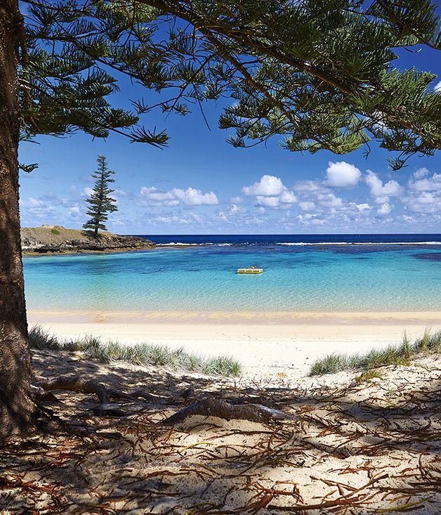 Emily Bay, Norfolk Island. So many happy memories there.