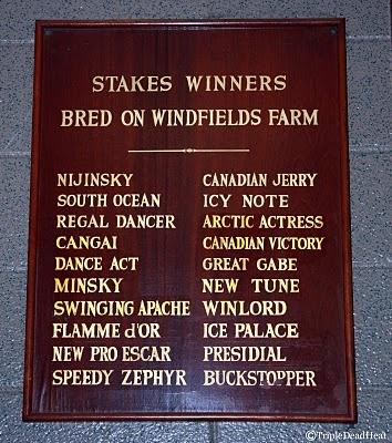 Stakes Winners