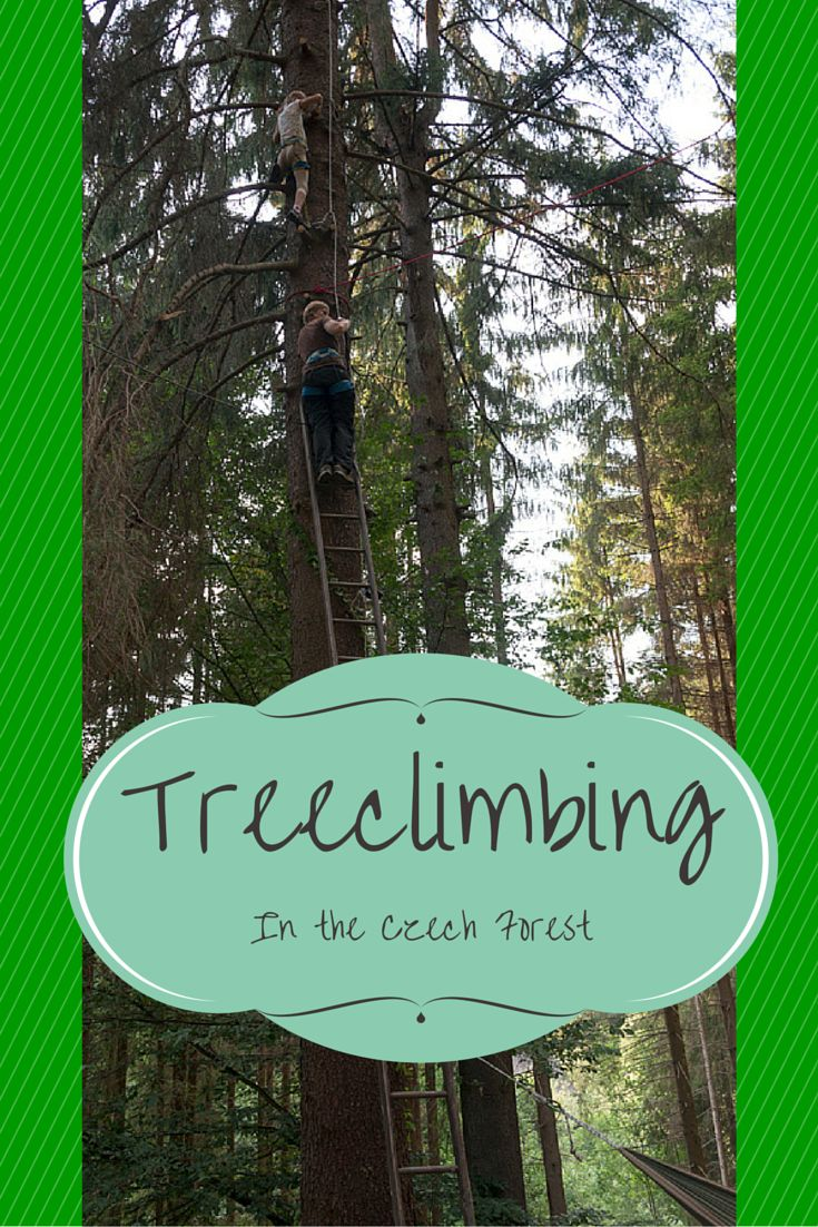 Outdoor adventures in the Czech Forest - rappelling, hiking, caving and treeclimbing, a lot scarier than it sounds!
