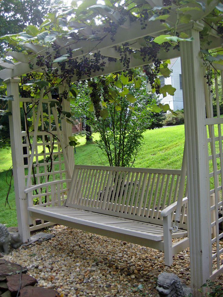 37 best grape vine arbors images on pinterest decks. Black Bedroom Furniture Sets. Home Design Ideas