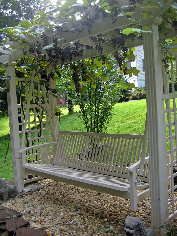 17 best images about grape vine arbors on pinterest gardens provence style and garden inspiration. Black Bedroom Furniture Sets. Home Design Ideas
