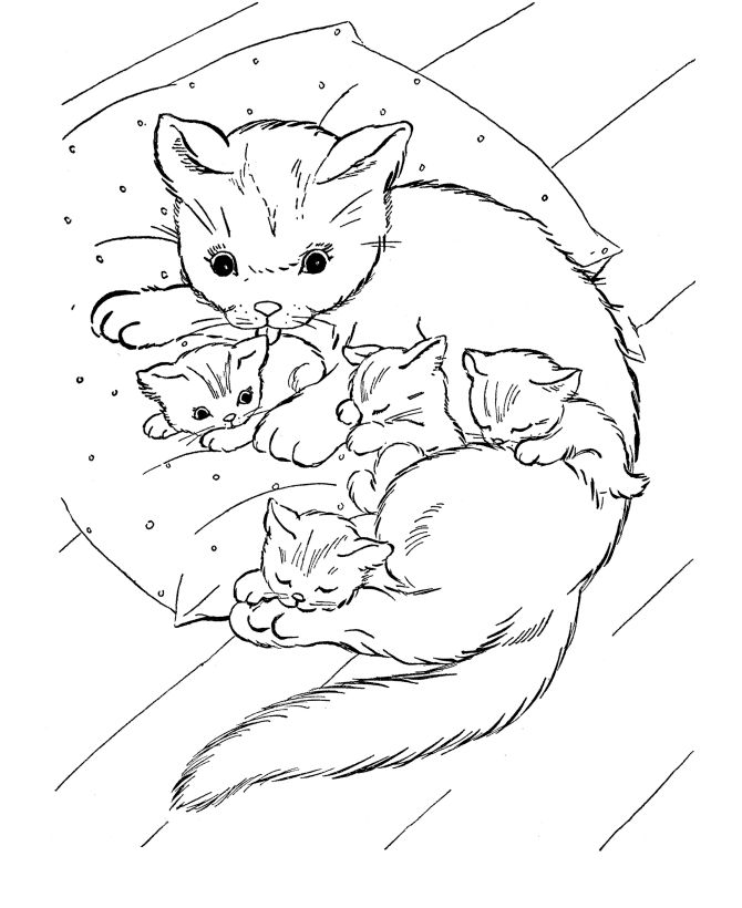 cat coloring page cat and kittens on pillow