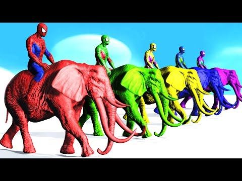 Colors Spiderman Riding Elephant Colours Cartoon For Kids - Learn Colors Fun Animals For Children - YouTube