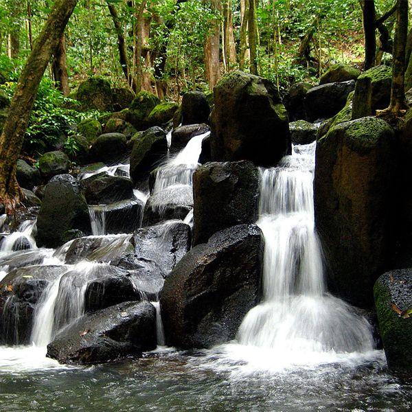 Rock water para la rigidez