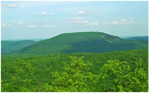 Bear Mountain, the highest point in Connecticut and the place to see views of three states—New York, Massachusetts, and Connecticut — at once. The 12-mile hike is part of the famous Appalachian Trail and goes through gorgeously green forests with wildflowers and wildlife.