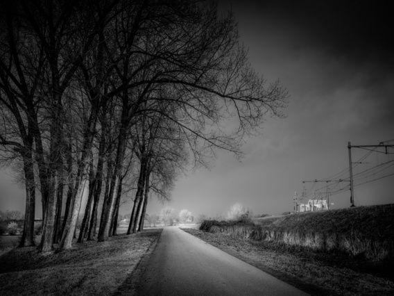 Nieuw in mijn Werk aan de Muur shop: Between tracks and trees