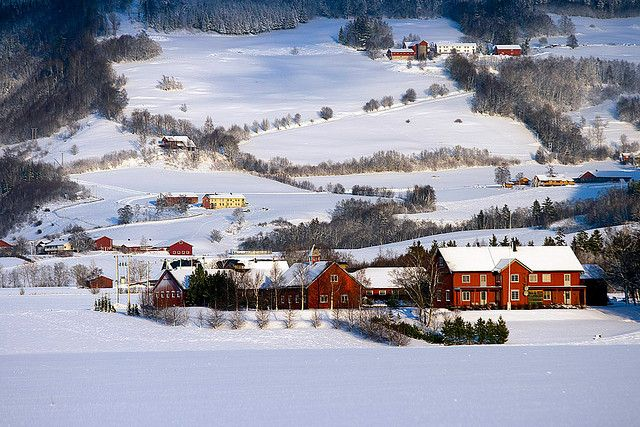 Norwegian farms in Verdal, my family owned a large farm in Norway prior to immagrating to the US