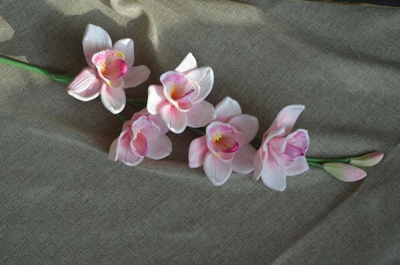 Natural Real Touch Artificial Pink Cymbidium Orchid Single Orchid Photography Tropical Wedding Flowers Cymbidium Orchids