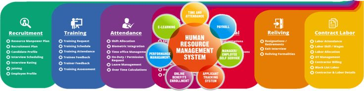 Human Resource Management System  NBy soft Human Resource Management System. Modern personnel management - the task is not easy but our company offers a complete solution. Personnel management system in the organization the company will allow the HR department to receive automatically generated the necessary human documents of any authorized employee. In applying personnel office
