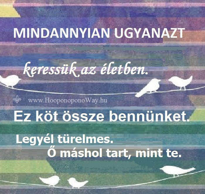 Hálát adok a mai napért. Legyél türelmes - magaddal és vele. Te a te utadon haladsz - ő a saját útján. A különbség abban áll, hogy ő máshol tart, mint te. Így szeretlek, Élet! Köszönöm. Szeretlek  ⚜ Ho'oponoponoWay Magyarország ⚜ www.HooponoponoWay.hu