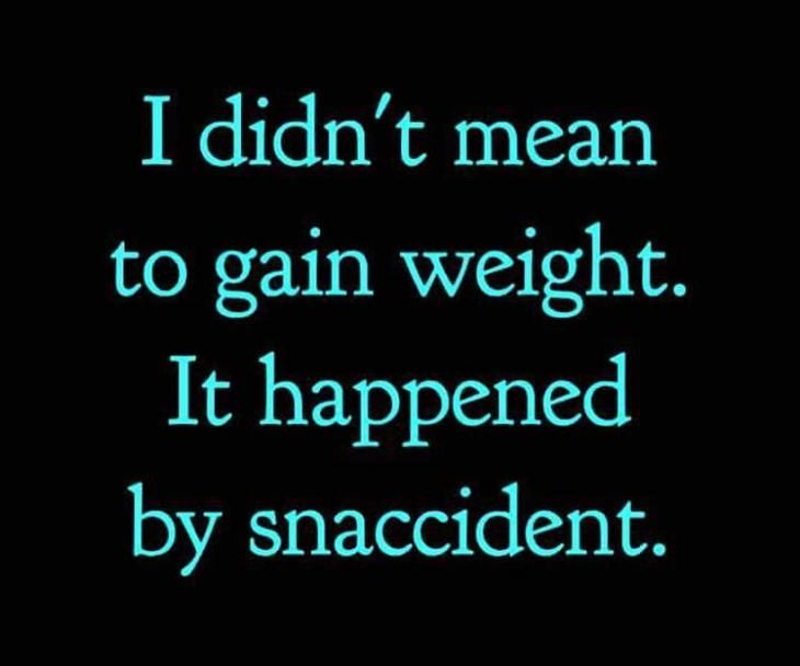 I didn't mean to gain weight. It happened by snaccident. | FUNIGY.com - New Funny Pictures and Hilarious GIFs Everyday!