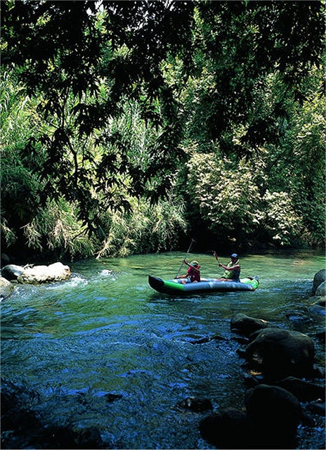 Enjoy the Outdoors Along the Dan River in the Golan Heights, at the base of Mount Hermon.